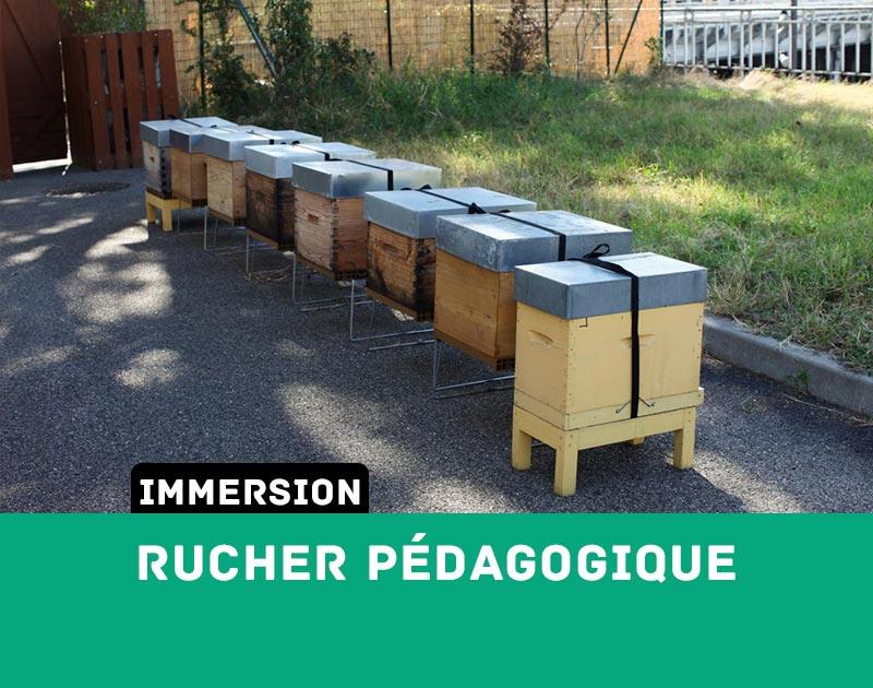[Immersion] Le Rucher Pédagogique Des Gones