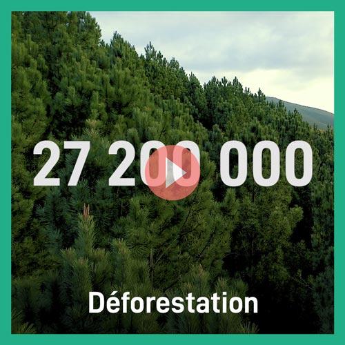 27 200 000 - Deforestation Et Alors
