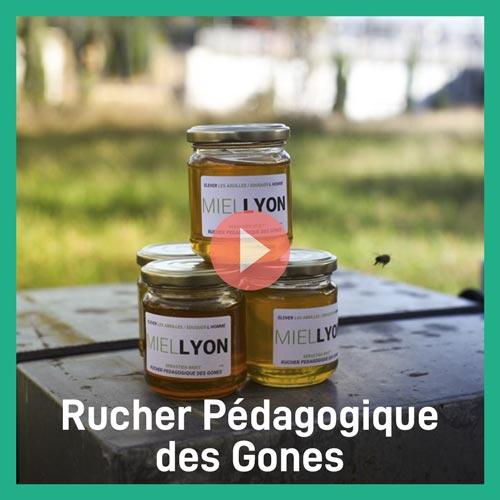 Miniature Rucher pédagogique des Gones