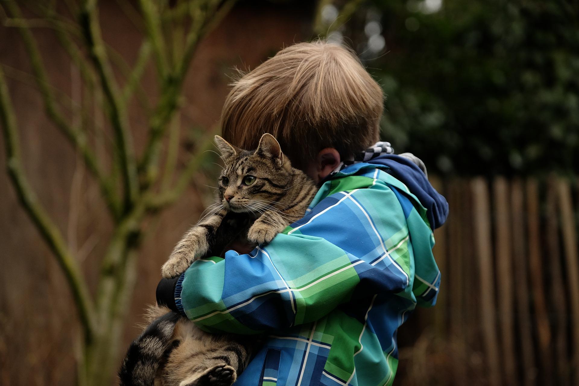 chat et enfant association lyonnaise Ron'Rhône   Bénévolat à Lyon