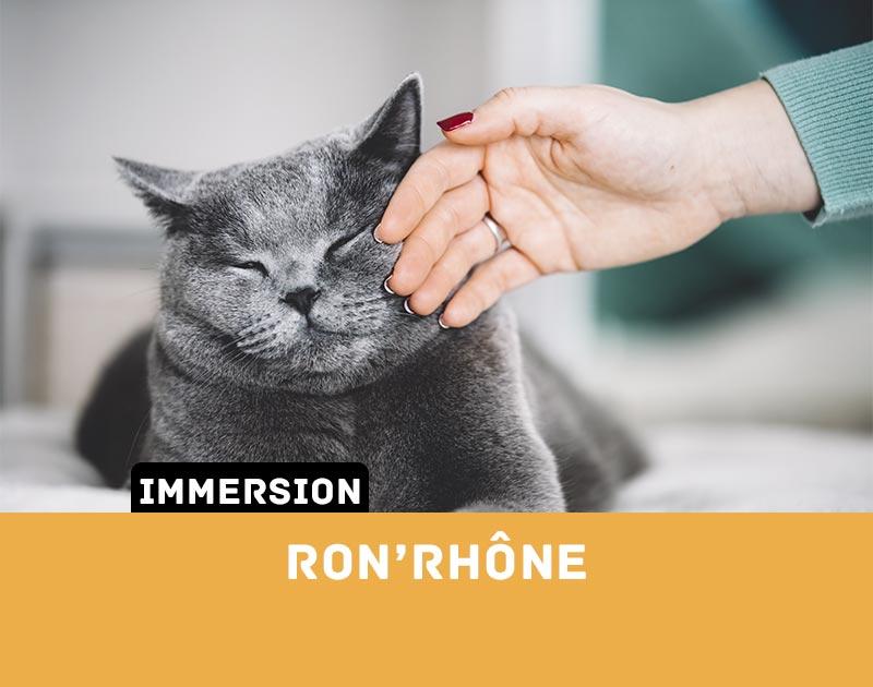 [Immersion] Ron'Rhône